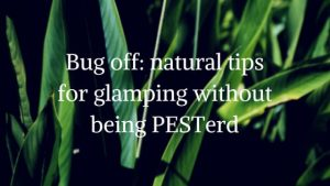 Bug-off_-useful-and-natural-tips-for-glamping-without-besting-PEST-erd1