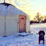 Dog in front of a snow yurt